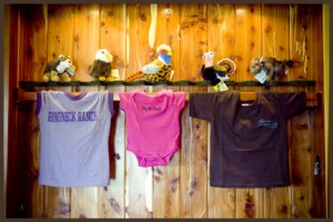 Tshirts and Plush Animals at Ringneck Ranch